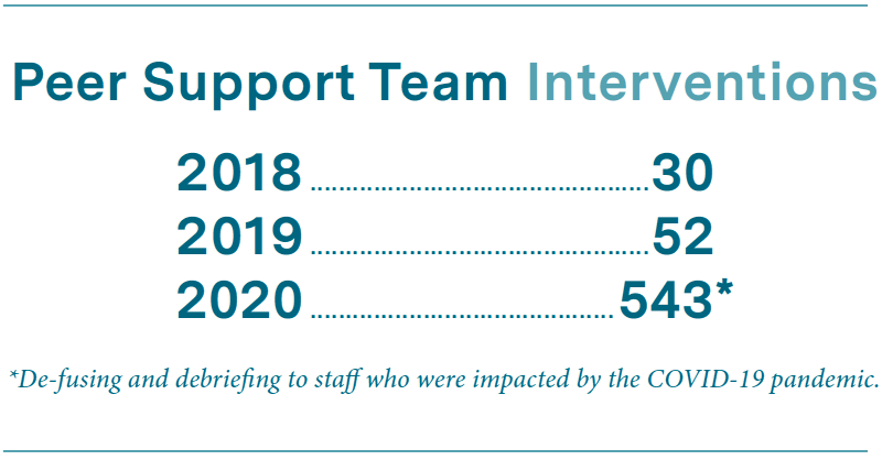 Peer support team interventions infographic